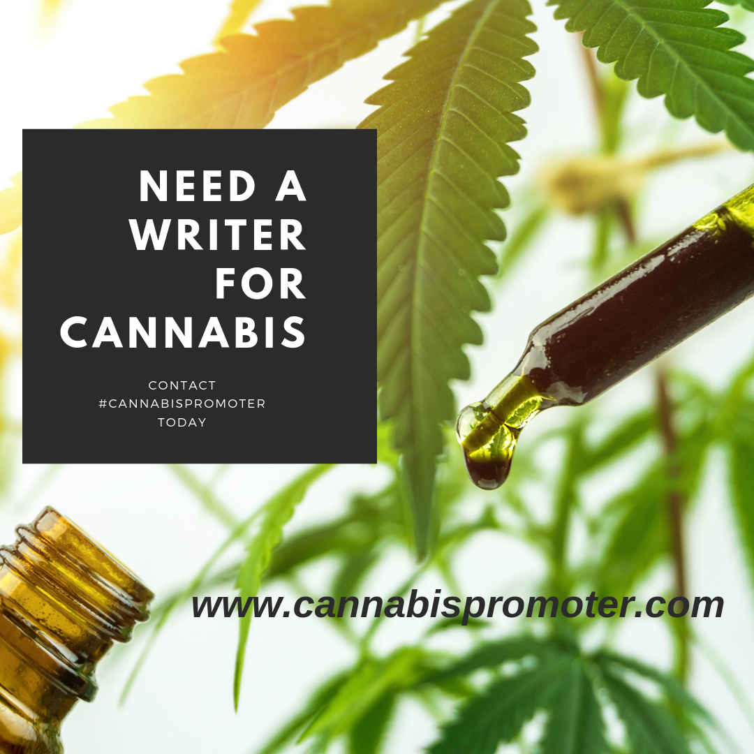 Need a cannabis writer